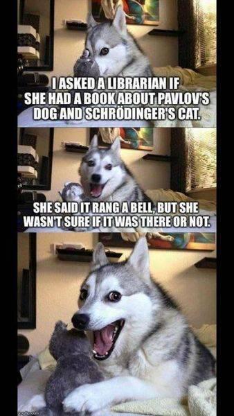 pavlov and schrodinger.jpg