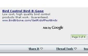 pf_google_ad_birdbgone.jpg