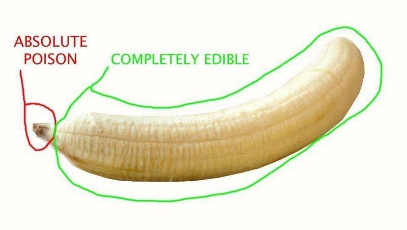 banana poisonous part physics forums
