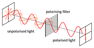 Polarised-light.png