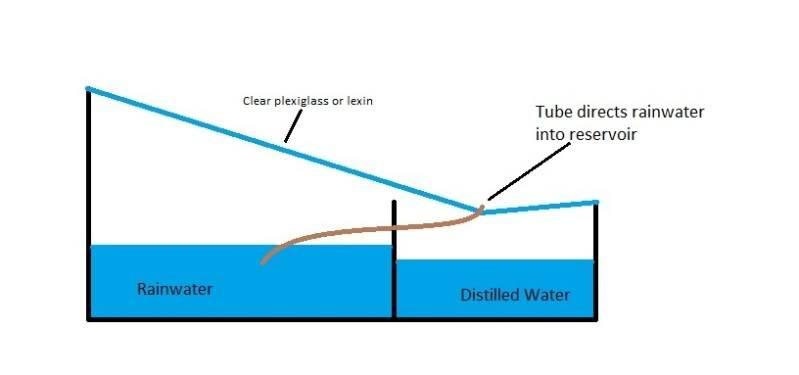 raincollector.jpg