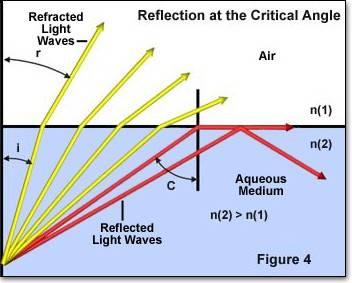 refractionfigure4.jpg