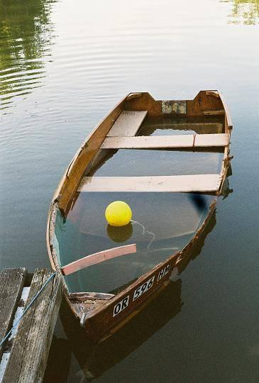 rosi_still_floats.JPG