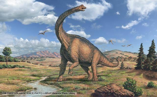 sauropoda_1.jpg