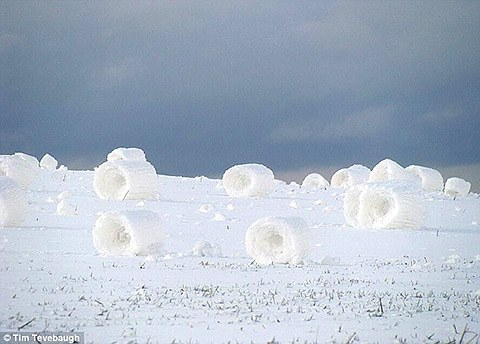 SnowBales01.JPG