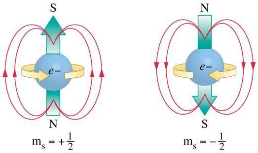spin.bmp.jpg