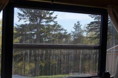 streaky-windows_opt.jpg
