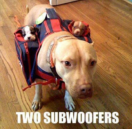 sub-woofers.jpg