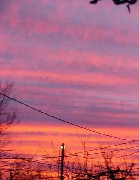sunsetstrips.jpg