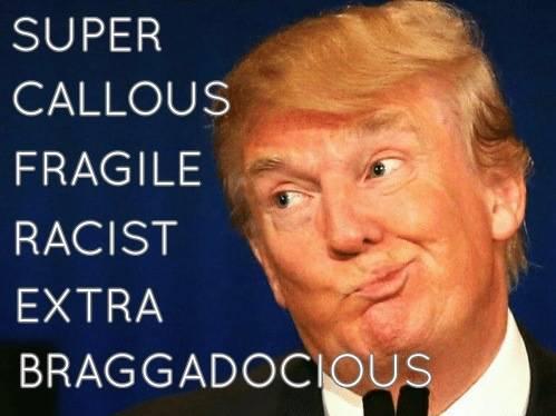 SuperCallousFragileRacistExtraBraggadocious.jpg