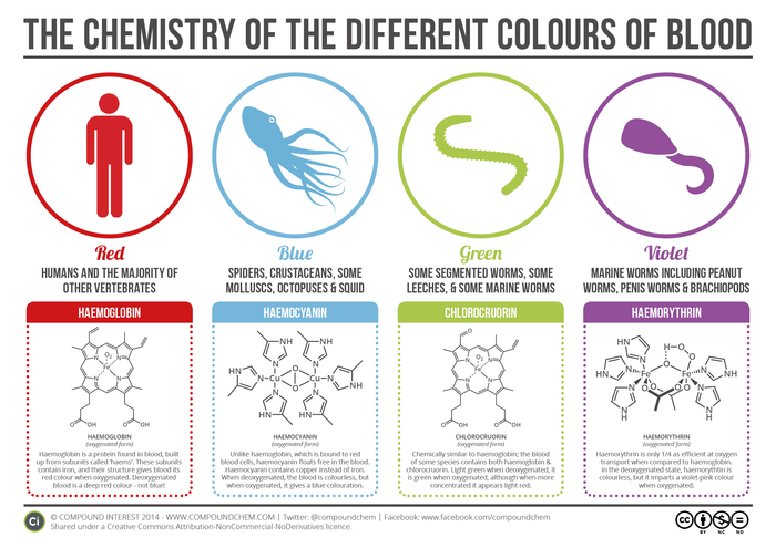 The-Chemistry-of-Blood-Colours-v2.png