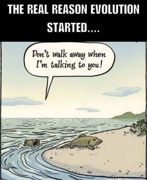the real reason for evolution.jpg