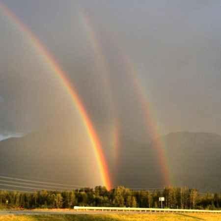 triple-rainbow-450x450.jpg