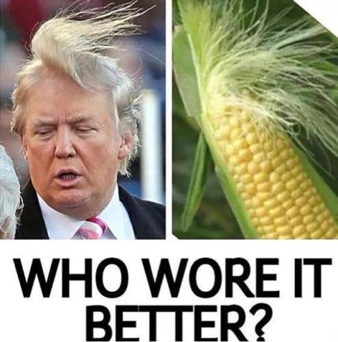 trump-vs-corn-who-wore-it-better-meme.jpg