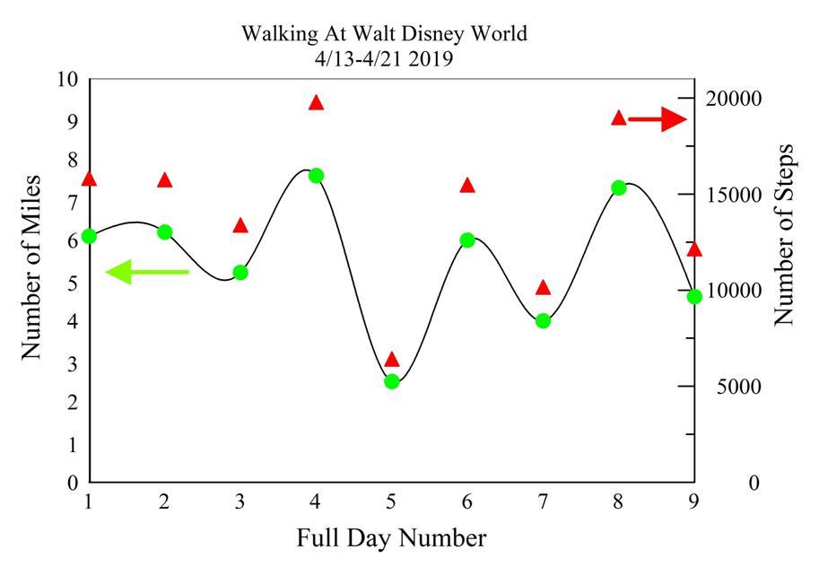 walking at wdw.jpg