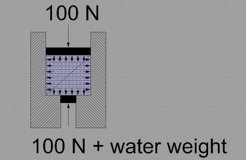 weights4.jpg