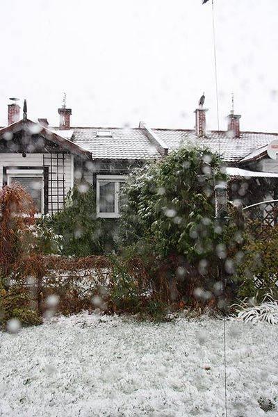 winter_2009.jpg