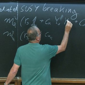 The Standard Model and Flavor - Lecture 6
