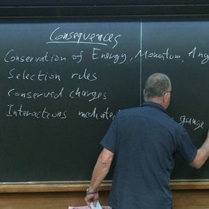 The Standard Model and Flavor - Lecture 1