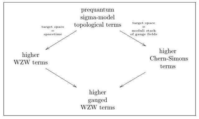 higher gauged WZW