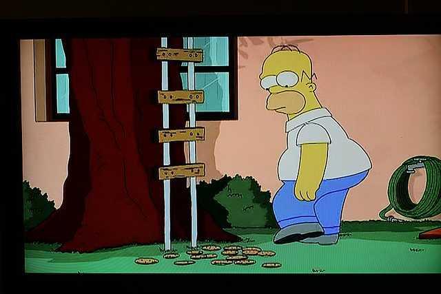 Homer using 50/1.8 lens