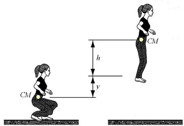 Actions on or by deformable bodies